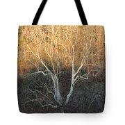 Flint River 12 Tote Bag