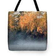 Flint River 14 Tote Bag