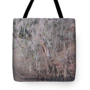 Flint River 2 Tote Bag