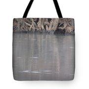Flint River 6 Tote Bag