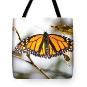 Flirting Monarch Tote Bag