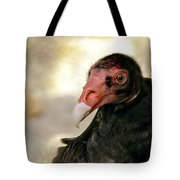 Flirting Turkey Buzzard  Tote Bag