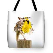 Flluffy Meadowlark Tote Bag