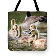 Floating Along The Pond Tote Bag
