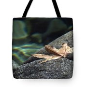 Floating.  Tahquitz Canyon. Palm Springs California.  Tote Bag