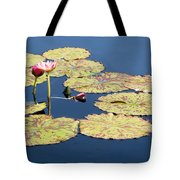 Floating On The Breath Tote Bag
