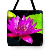 Floating Purple Water Lily Tote Bag