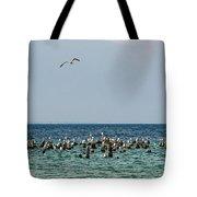 Flock Of Seagulls Tote Bag