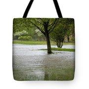 Flooded Park Tote Bag
