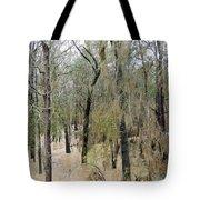 Flooding Dry Creek Tote Bag