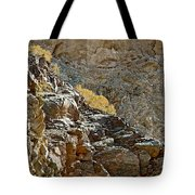 Flora In Sunlight In Big Painted Canyon Trail In Mecca Hills-ca Tote Bag
