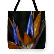 Floral Points Tote Bag