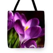 Floral Shadows Tote Bag