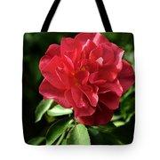 Floribunda Rose 8978 Tote Bag