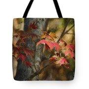 Florida Autumn Leaves Tote Bag