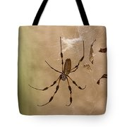 Florida Banana Spider Tote Bag