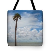 Florida Bay 6943 Tote Bag