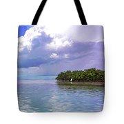 Florida Bay Island Filtered Tote Bag
