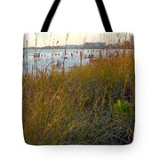 Fabulous Siesta Key  Tote Bag