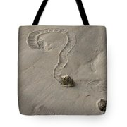 Florida Crown Conch Photo Tote Bag
