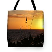 Florida Delight Tote Bag