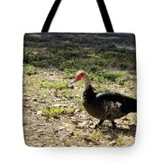 Florida Duck On Green Grass Tote Bag
