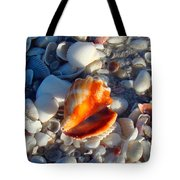 Florida Fighting Conch 1 Tote Bag