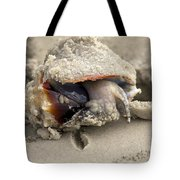 Florida Fighting Conch Tote Bag