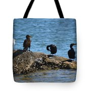 Florida Hangout Tote Bag