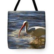 Florida Ibis Tote Bag