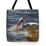 Florida Ibis Tote Bag