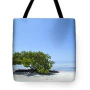 Florida Keys Lonely Tree Tote Bag