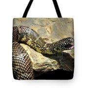 Florida King Snake Lampropeltis Getula Floridana Usa Tote Bag