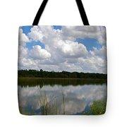 Florida Lake 1 Tote Bag
