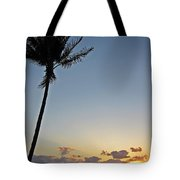 Florida Morning Tote Bag