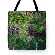 Florida River Tote Bag