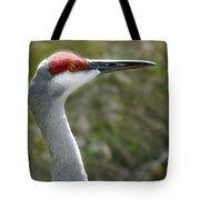 Florida Sandhill Crane Tote Bag