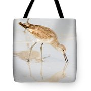 Florida Shorebirds - Willets In Their Summer Finery Tote Bag