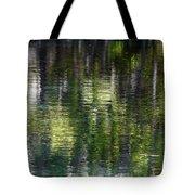 Florida Silver Springs River Tote Bag