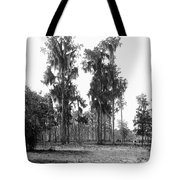Florida Spanish Moss Tote Bag