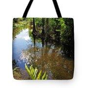 Florida Stream Tote Bag