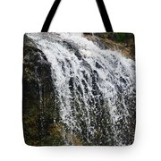 Florida Waterfall Tote Bag
