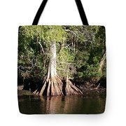 Florida Waterways 2 Tote Bag