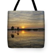 Florida Wetlands Tote Bag
