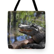 Florida - Where The Alligator Smiles Tote Bag