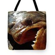 Flounder Face 2 10/26 Tote Bag