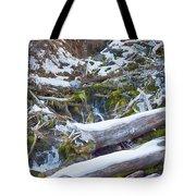 Flow V9 Tote Bag