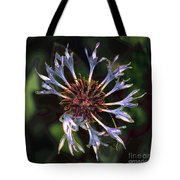 10415 Cornflower Tote Bag