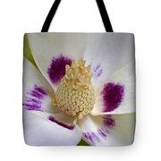 Flower 179 Tote Bag
