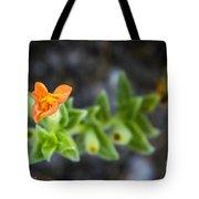 Flower 21 Tote Bag